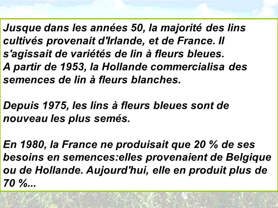 Jusque dans les années 50, la majorité des lins cultivés provenait d'Irlande, et de France. Il s'agissait de variétés de lin à fleurs bleues. A partir