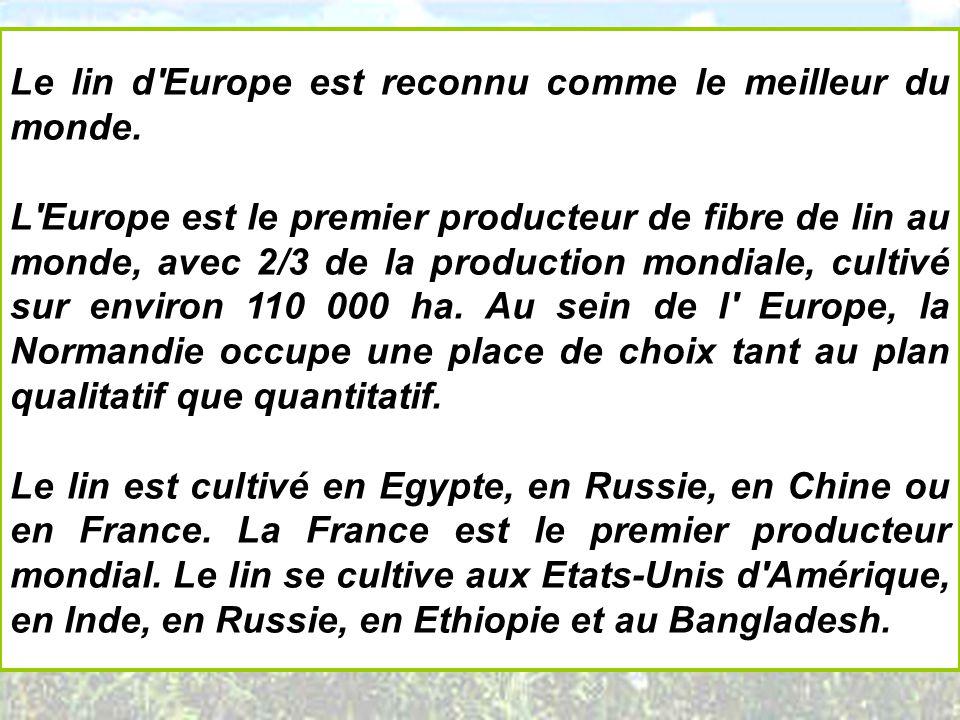 Le lin d'Europe est reconnu comme le meilleur du monde. L'Europe est le premier producteur de fibre de lin au monde, avec 2/3 de la production mondial
