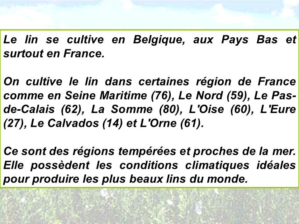 Le lin se cultive en Belgique, aux Pays Bas et surtout en France. On cultive le lin dans certaines région de France comme en Seine Maritime (76), Le N