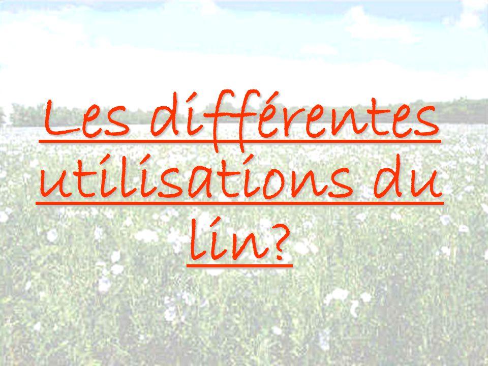 DANS L ENERGIE Les anas de lin peuvent être utilisés à des fins énergétiques.