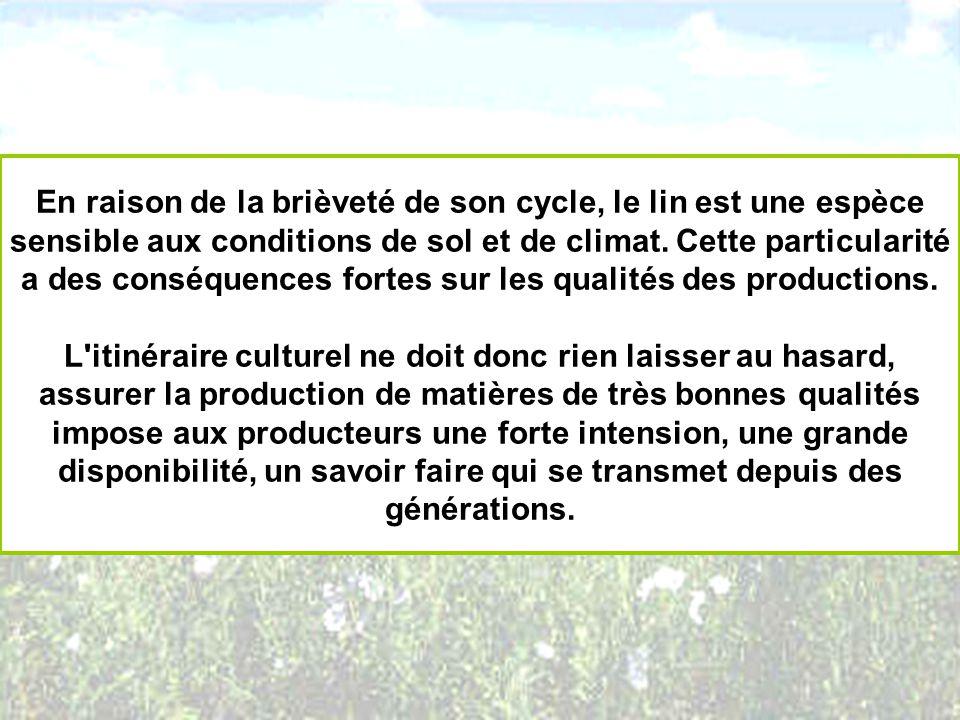En raison de la brièveté de son cycle, le lin est une espèce sensible aux conditions de sol et de climat. Cette particularité a des conséquences forte