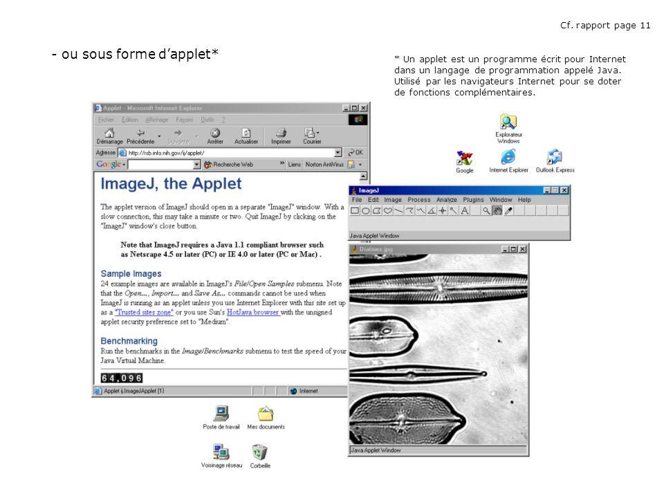 - ou sous forme dapplet* * Un applet est un programme écrit pour Internet dans un langage de programmation appelé Java.