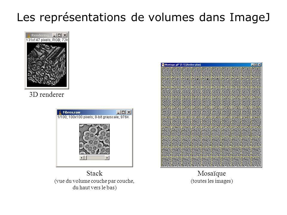 Les représentations de volumes dans ImageJ 3D renderer Mosaïque (toutes les images) Stack (vue du volume couche par couche, du haut vers le bas)