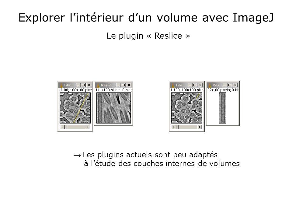 Explorer lintérieur dun volume avec ImageJ Les plugins actuels sont peu adaptés à létude des couches internes de volumes Le plugin « Reslice »