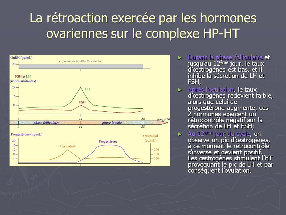 Les composantes du système réglant: Des capteurs : ce sont les cellules du complexe HT-HP directement sensibles à la concentration plasmique des hormones ovariennes; Des capteurs : ce sont les cellules du complexe HT-HP directement sensibles à la concentration plasmique des hormones ovariennes; Des messagers: la GnRH, la FSH et la LH, les œstrogènes et la progestérone; Des messagers: la GnRH, la FSH et la LH, les œstrogènes et la progestérone; Des effecteurs: les cellules de la granulosa, les cellules thécales et les cellules du corps jaune; Des effecteurs: les cellules de la granulosa, les cellules thécales et les cellules du corps jaune; Un système de transmission: lappareil circulatoire; Un système de transmission: lappareil circulatoire; Un centre intégrateur : lhypothalamus qui intègre la concentration plasmatique en hormones ovariennes mais aussi les facteurs environnementaux.
