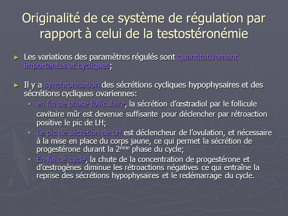 Originalité de ce système de régulation par rapport à celui de la testostéronémie Les variations des paramètres régulés sont quantitativement importan