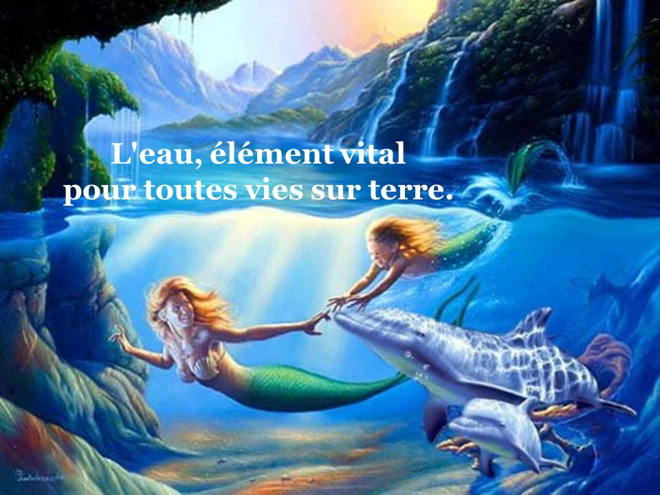 Création de zoupinette2@yahoo.fr Auteur du Texte Sylvain Veilleux Images du site www.sos-dauphins.com/ Musique Eric Serra « Le Grand Bleu » Création d