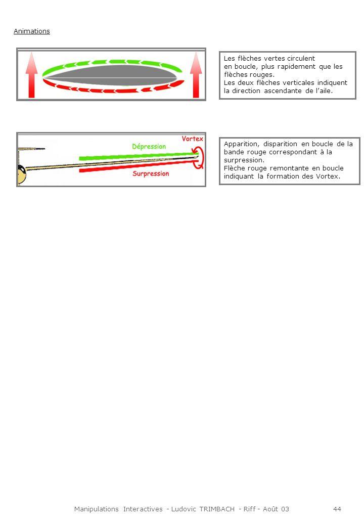 Manipulations Interactives - Ludovic TRIMBACH - Riff - Août 0344 Animations Les flèches vertes circulent en boucle, plus rapidement que les flèches rouges.