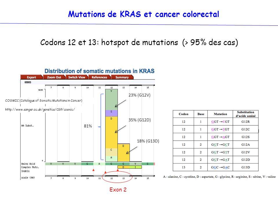 COSMIC (Catalogue of Somatic Mutations in Cancer) http://www.sanger.ac.uk/genetics/CGP/cosmic/ 18% (G13D) 81% 23% (G12V) 35% (G12D) Mutations de KRAS