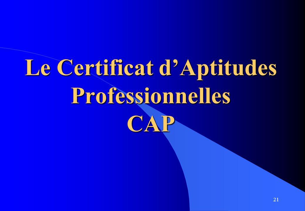 21 Le Certificat dAptitudes Professionnelles CAP