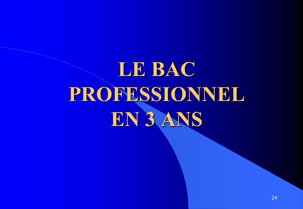 24 LE BAC PROFESSIONNEL EN 3 ANS