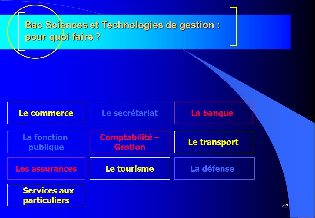 47 Bac Sciences et Technologies de gestion : pour quoi faire ? Services aux particuliers La fonction publique Le secrétariat Comptabilité – Gestion Le
