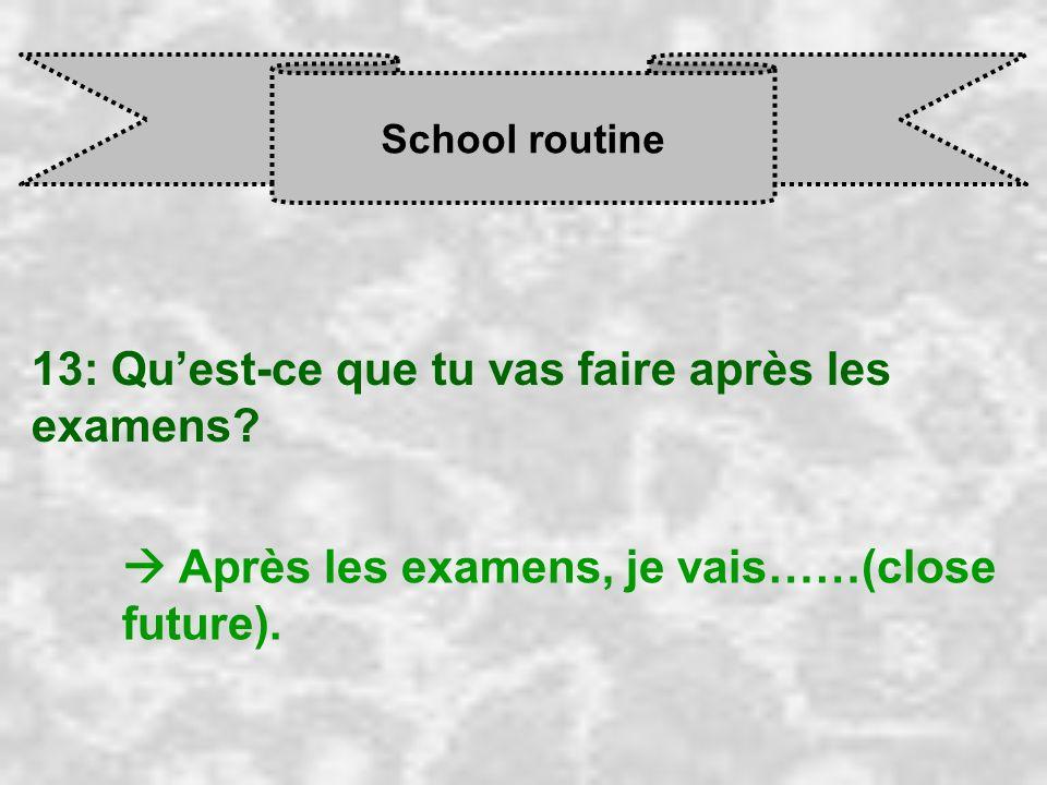 School routine 13: Quest-ce que tu vas faire après les examens? Après les examens, je vais……(close future).