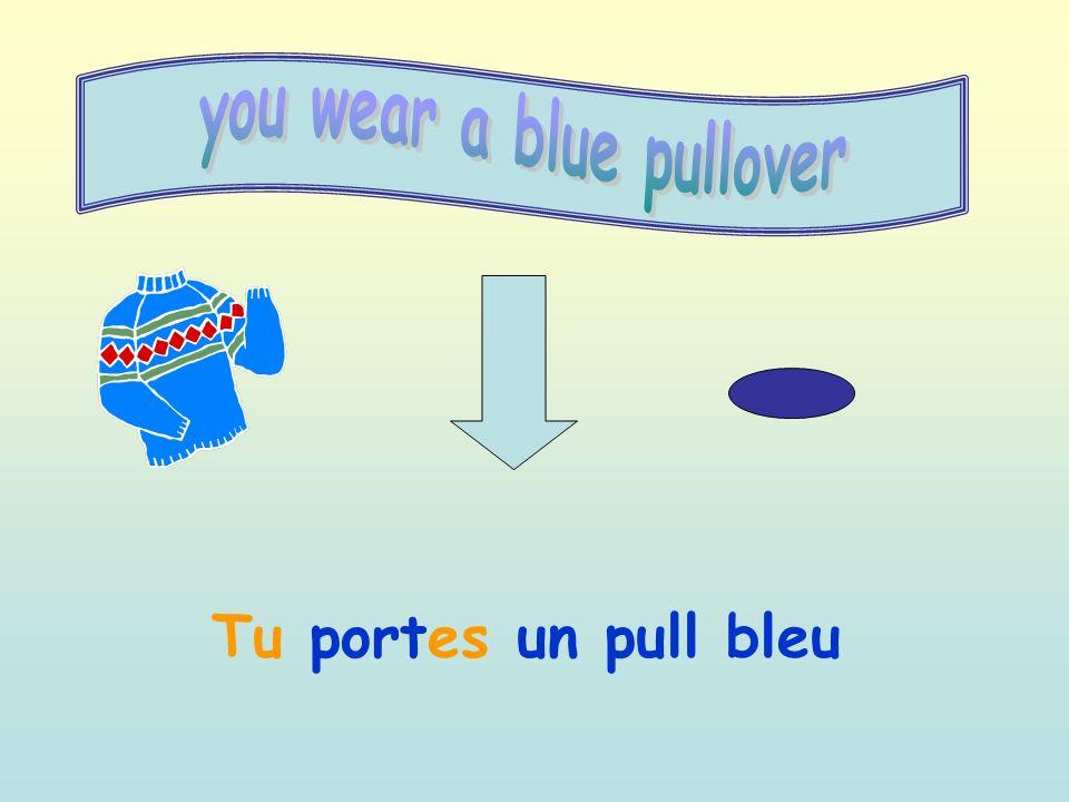Tu portes un pull bleu