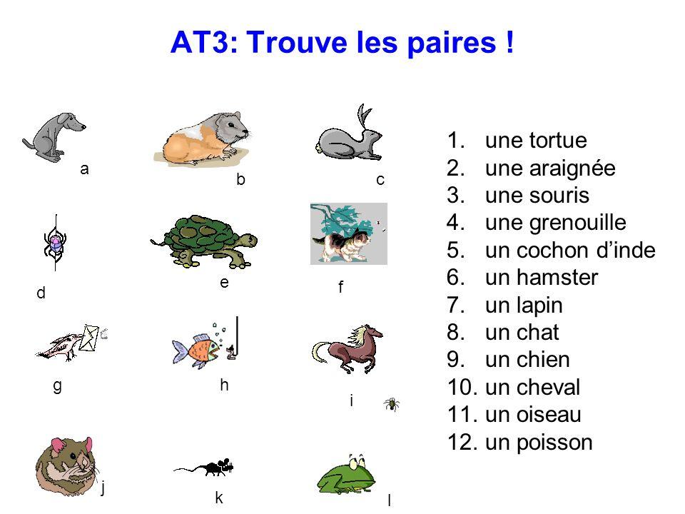 AT3: Trouve les paires .1. une tortue 2. une araignée 3.