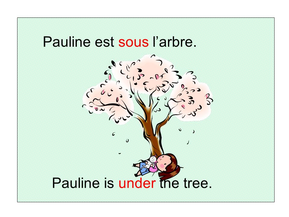 Pauline est sous larbre. Pauline is under the tree.