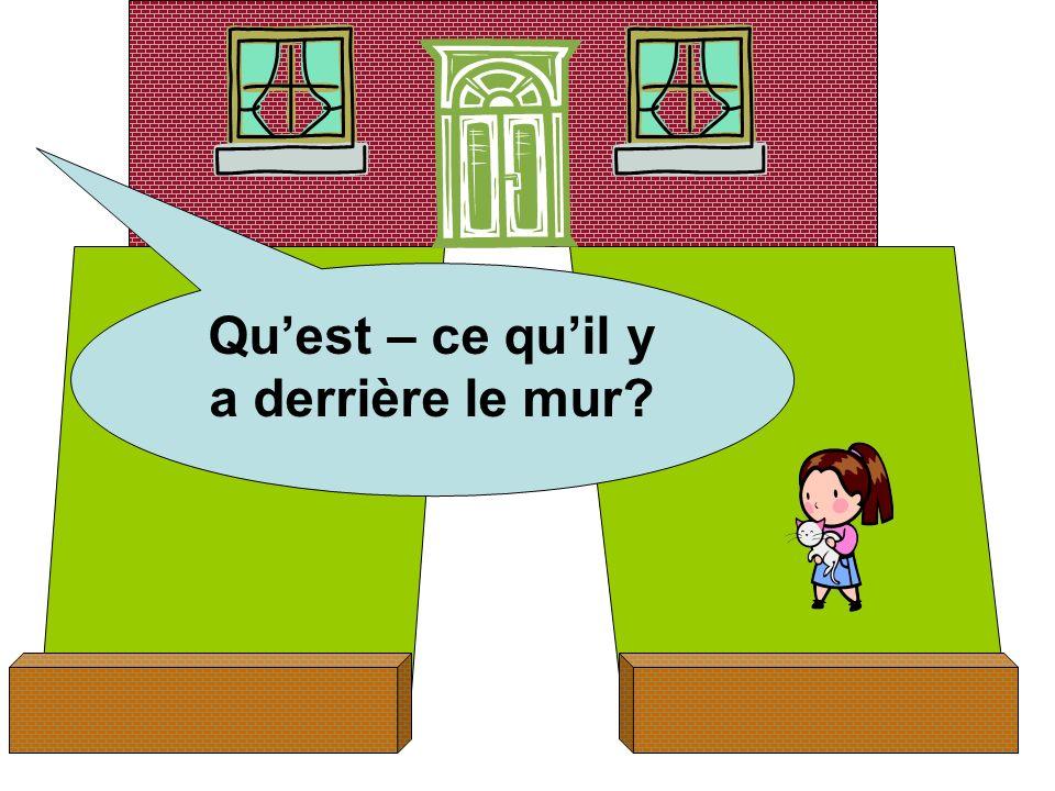 Quest – ce quil y a derrière le mur?