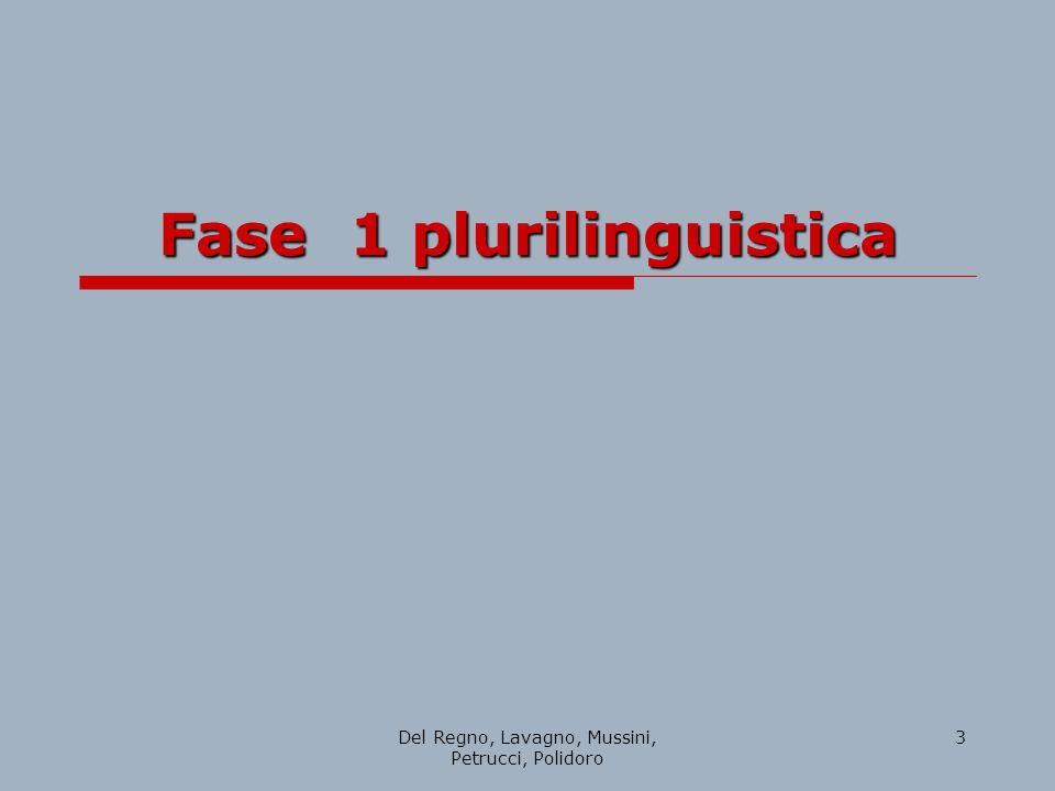 Del Regno, Lavagno, Mussini, Petrucci, Polidoro 3 Fase 1 plurilinguistica