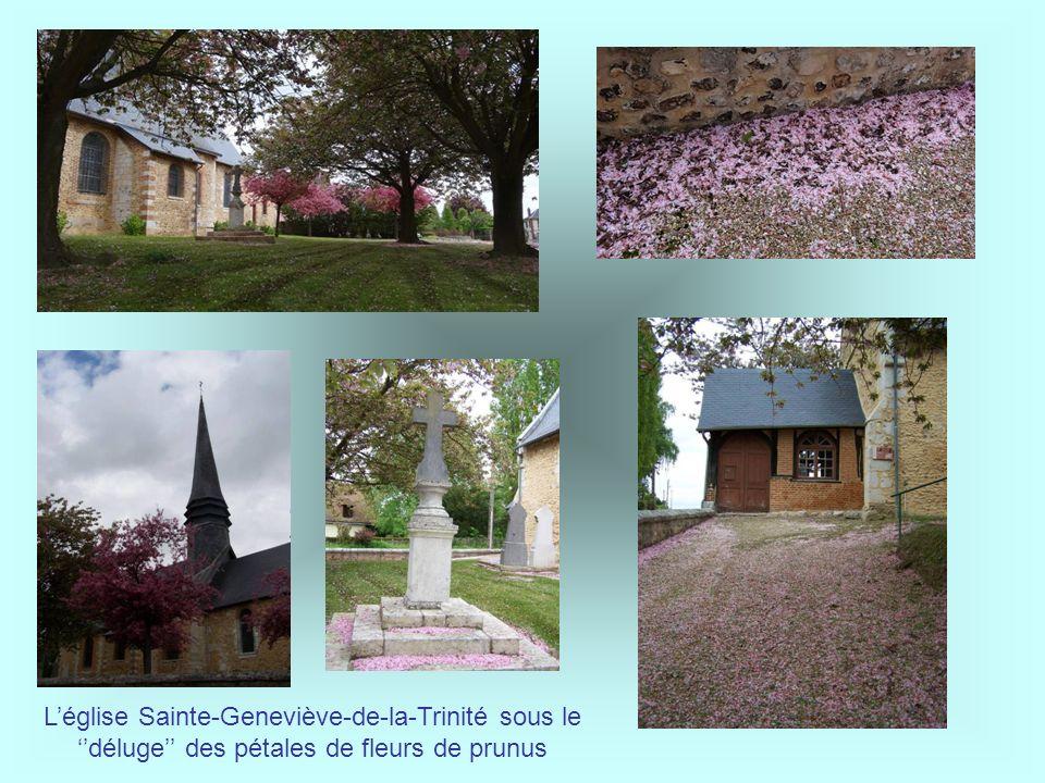 Après la visite, on se rend à pied vers la salle des fêtes et la mairie du village Lucile en véritable historienne intarissable connaît tous les secre