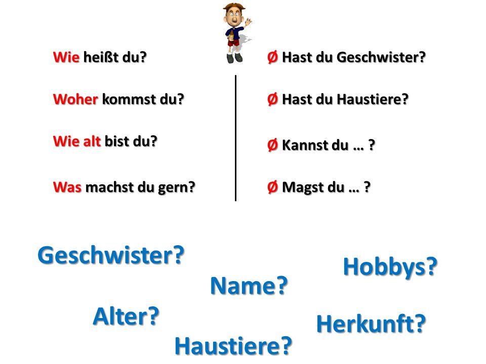 Wie heißt du? Woher kommst du? Wie alt bist du? Was machst du gern? Ø Hast du Geschwister? Ø Kannst du … ? Ø Hast du Haustiere? Ø Magst du … ? Name? H