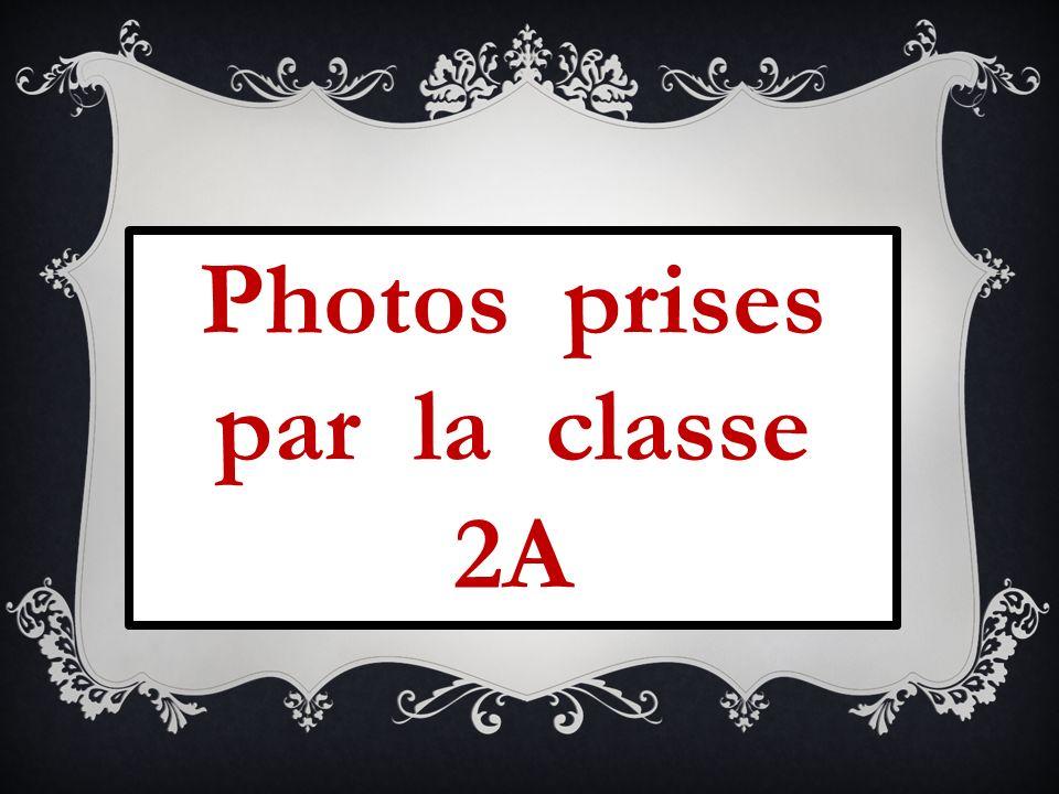 Photos prises par la classe 2A