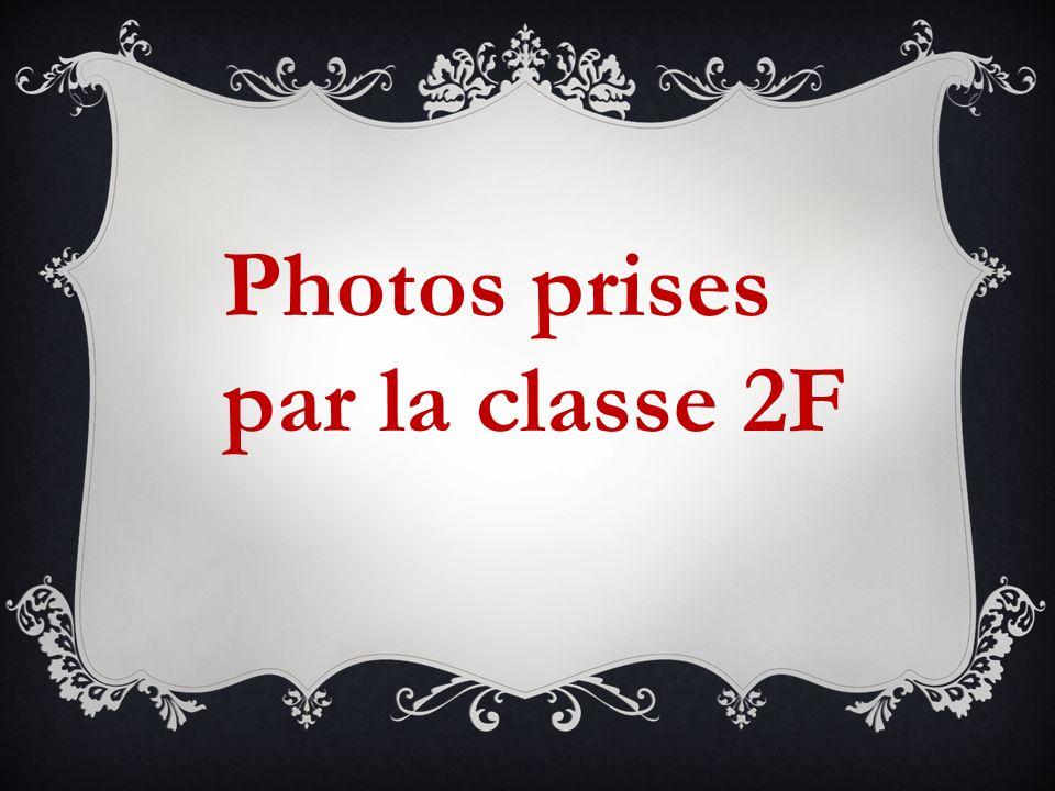 Photos prises par la classe 2F