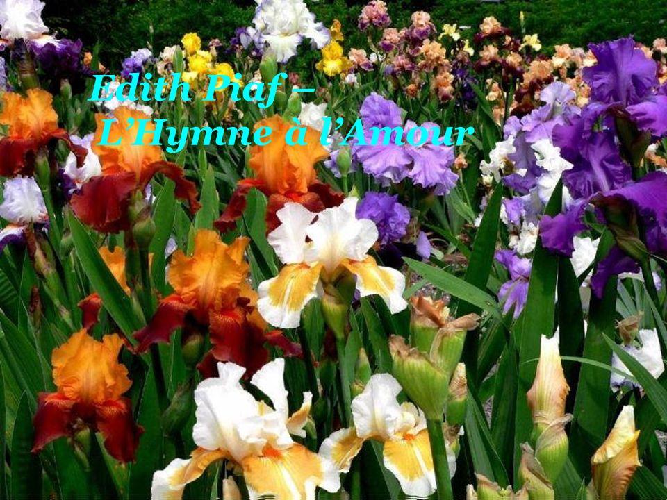 Dieu réunit ceux qui s aiment Dio riunisce quelli che si amano