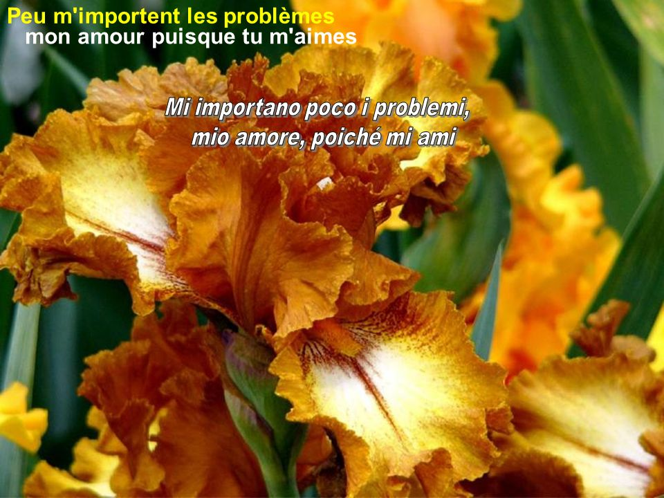 Dans le ciel plus de problèmes Nel cielo non ci saranno più problemi