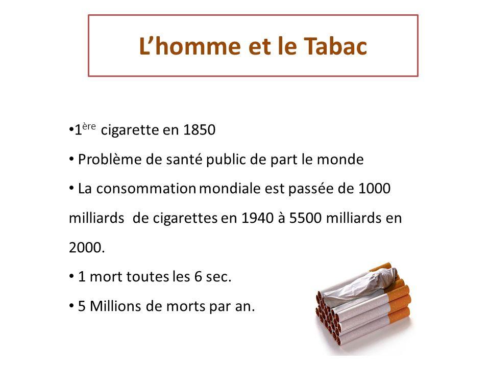 Lhomme et le Tabac 1 ère cigarette en 1850 Problème de santé public de part le monde La consommation mondiale est passée de 1000 milliards de cigarettes en 1940 à 5500 milliards en 2000.
