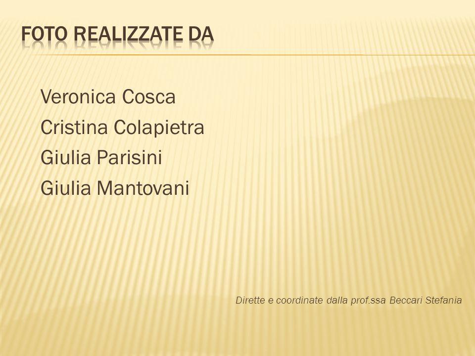 Veronica Cosca Cristina Colapietra Giulia Parisini Giulia Mantovani Dirette e coordinate dalla prof.ssa Beccari Stefania