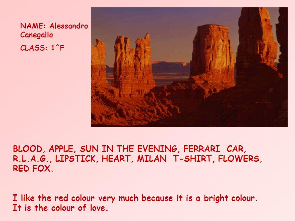 Annalisa Conti classe 1^H Le rouge Le coeur lamour le feu le soleil la passion lété la chaleur Le rouge est passionel, cest une couleur qui exprime les sentiments.