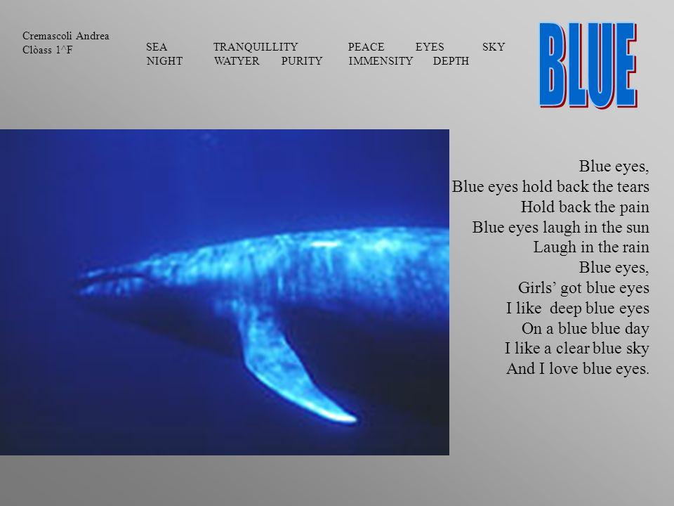 bleu Ylenia classe 1H bleu Mon téléphone est bleu.