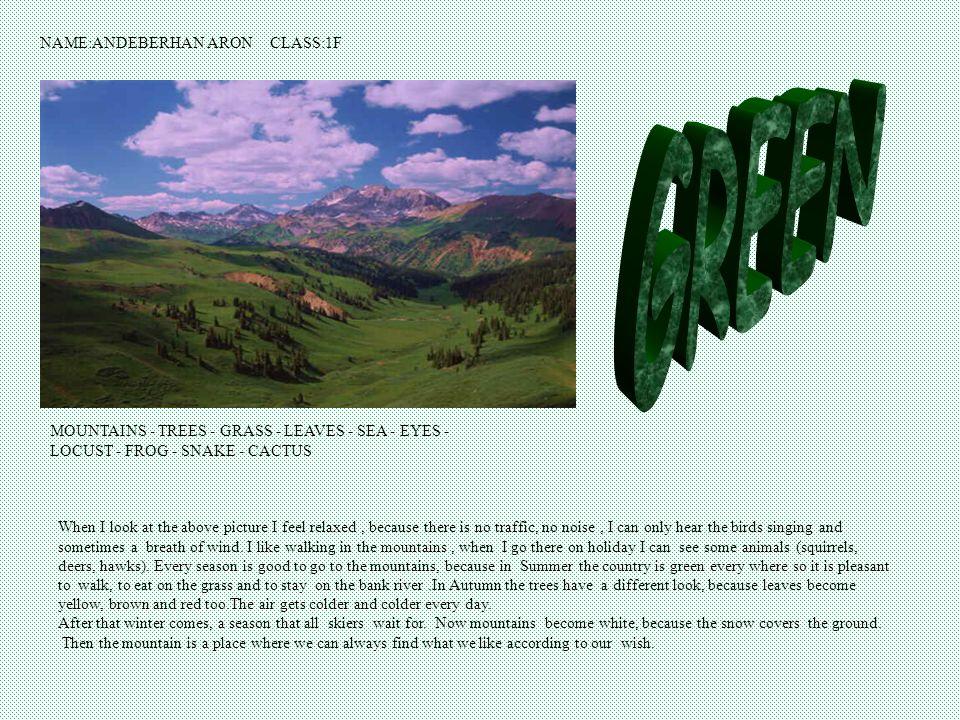 le Vert Alessandro Maggioni 1^H le Vert La campagne, lherbe,la nature,les arbres, la montagne, les bois, les parcs nationaux, les yeux.