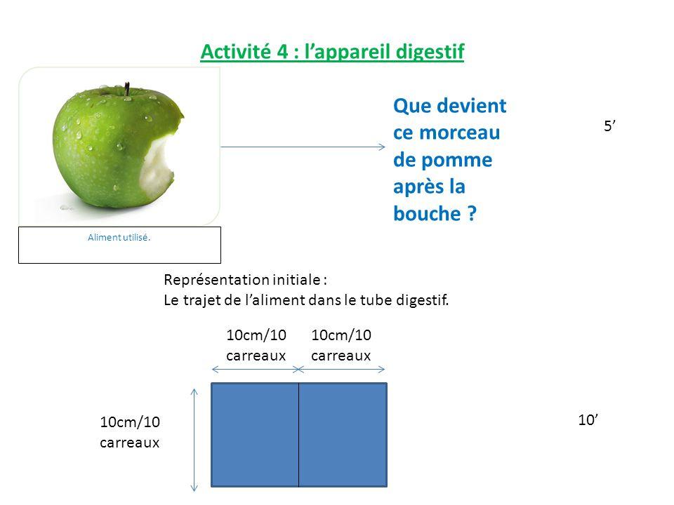Activité 4 : l'appareil digestif Aliment utilisé.Que devient ce morceau de pomme après la bouche .