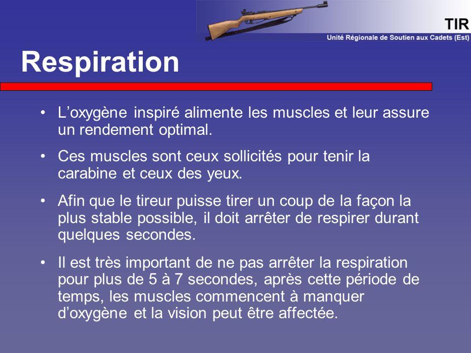 L'oxygène inspiré alimente les muscles et leur assure un rendement optimal. Ces muscles sont ceux sollicités pour tenir la carabine et ceux des yeux.