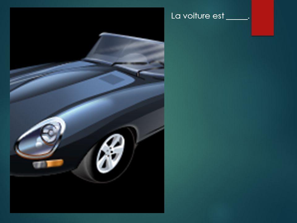 La voiture est _____.