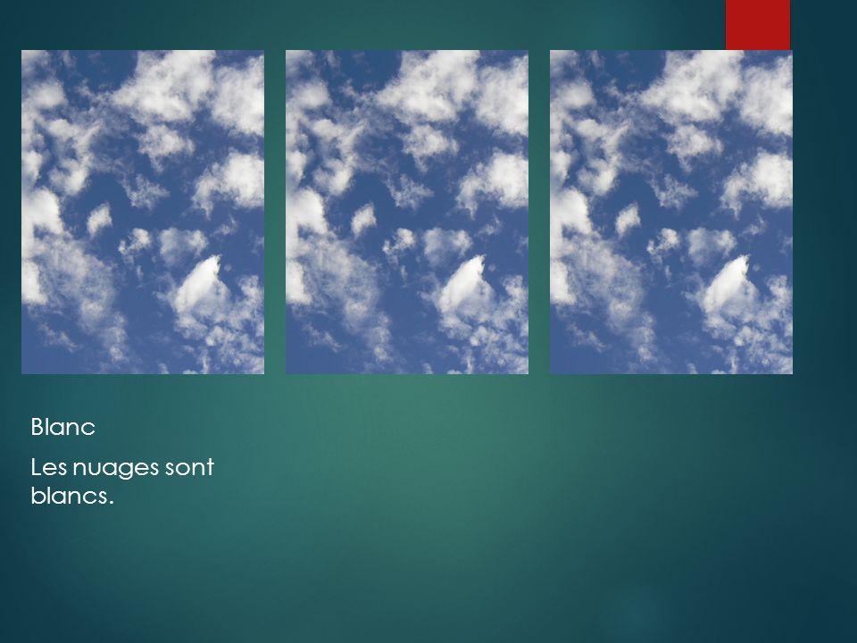 Blanc Les nuages sont blancs.