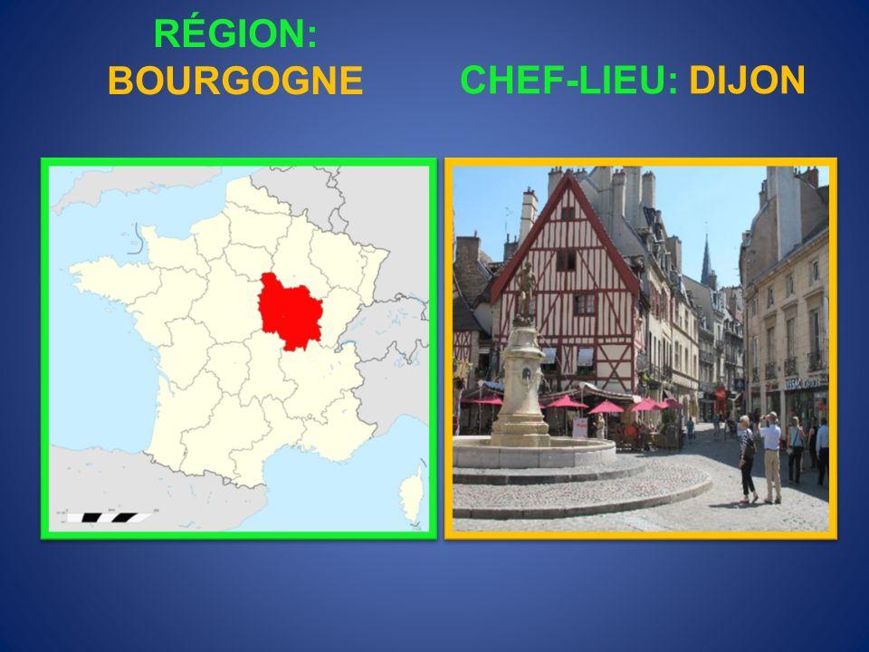 RÉGION: AUVERGNE CHEF-LIEU: CLERMONT-FERRAND