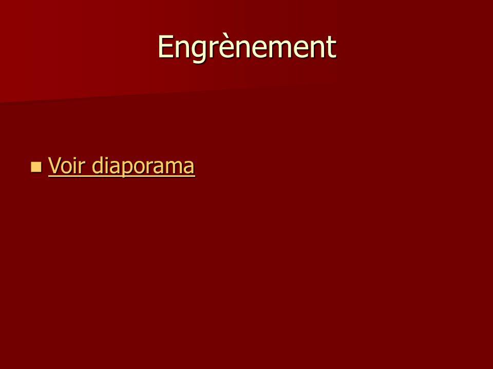 Transmission de puissance par engrenages Dimensions normalisées: Dimensions normalisées: Tout ce qui concerne les engrenages est normalisé.