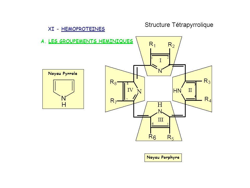 Structure Tétrapyrrolique