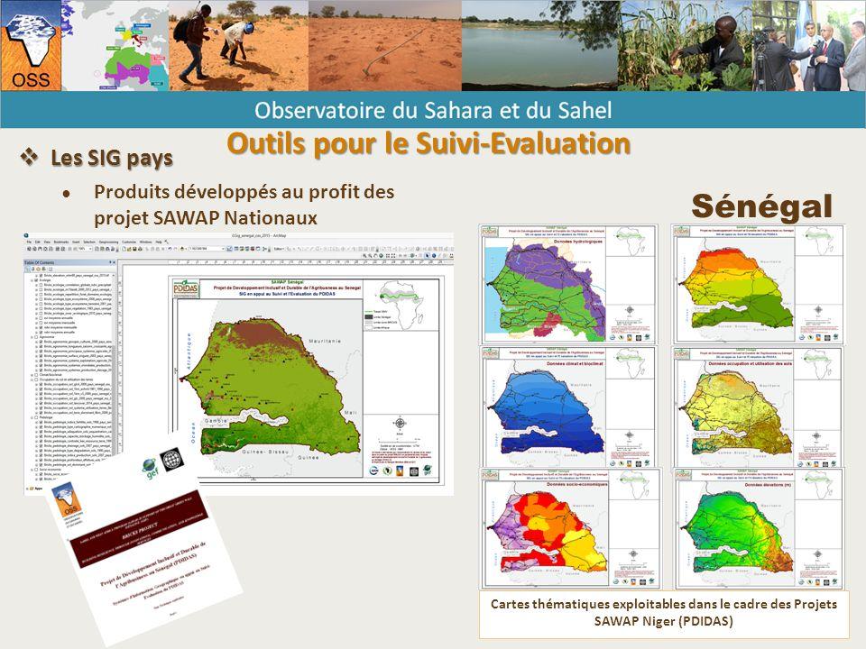 Sénégal Cartes thématiques exploitables dans le cadre des Projets SAWAP Niger (PDIDAS)  Les SIG pays ● Produits développés au profit des projet SAWAP Nationaux Outils pour le Suivi-Evaluation