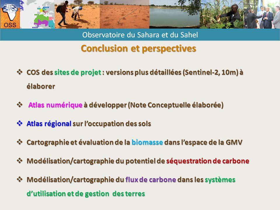 Conclusion et perspectives  COS des sites de projet : versions plus détaillées (Sentinel-2, 10m) à élaborer  Atlas numérique à développer (Note Conceptuelle élaborée)  Atlas régional sur l'occupation des sols  Cartographie et évaluation de la biomasse dans l'espace de la GMV  Modélisation/cartographie du potentiel de séquestration de carbone  Modélisation/cartographie du flux de carbone dans les systèmes d'utilisation et de gestion des terres