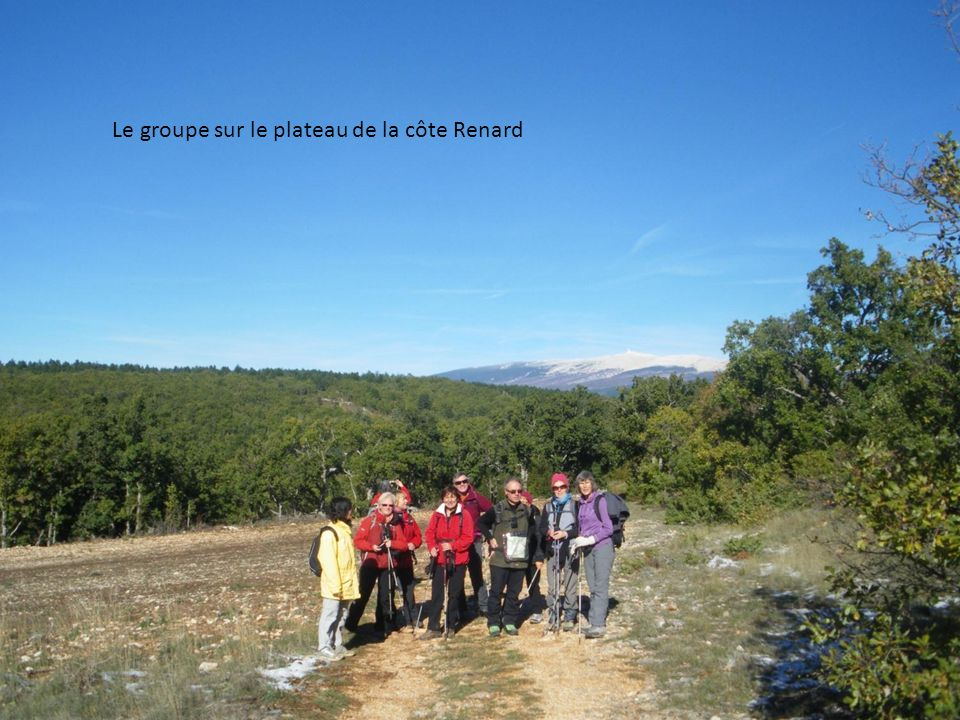 Le groupe sur le plateau de la côte Renard