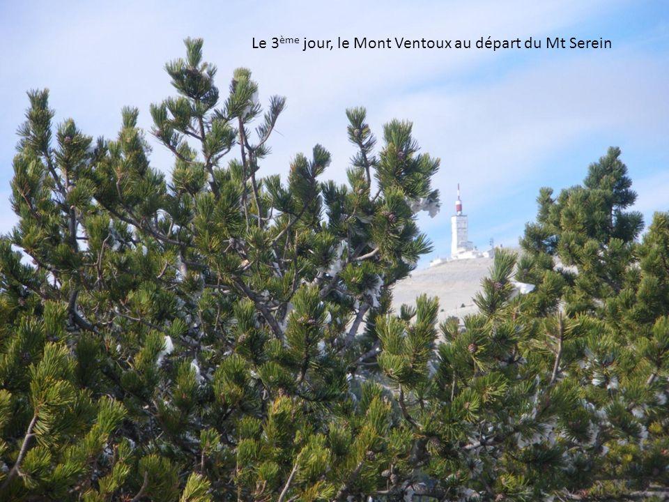 Le 3 ème jour, le Mont Ventoux au départ du Mt Serein
