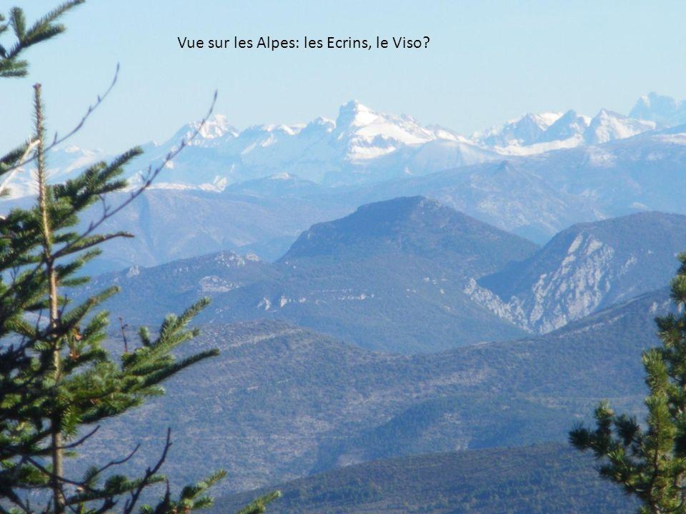 Vue sur les Alpes: les Ecrins, le Viso