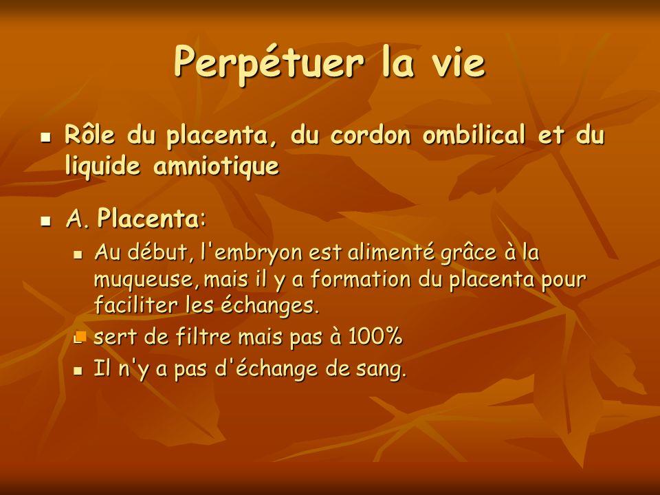 Perpétuer la vie Rôle du placenta, du cordon ombilical et du liquide amniotique Rôle du placenta, du cordon ombilical et du liquide amniotique A. Plac