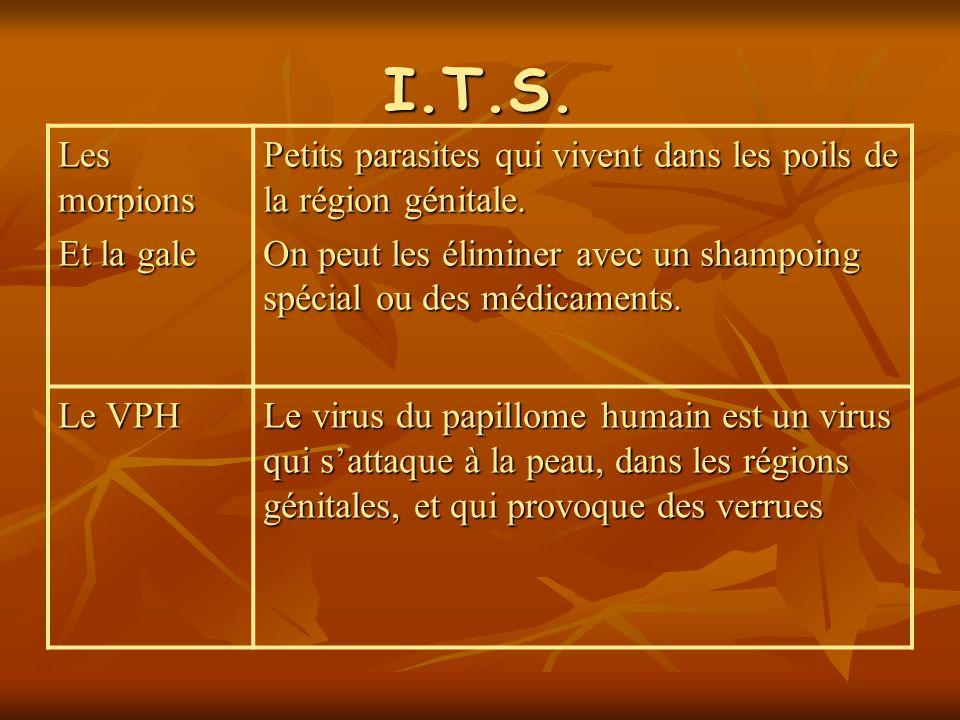 I.T.S. Les morpions Et la gale Petits parasites qui vivent dans les poils de la région génitale. On peut les éliminer avec un shampoing spécial ou des