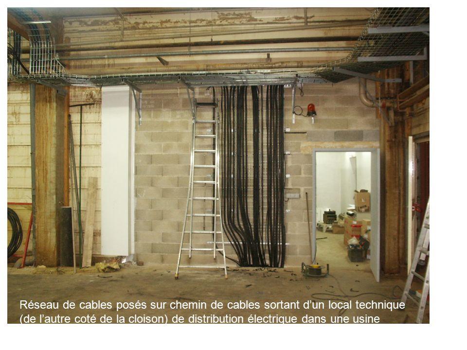 cable dans cloison