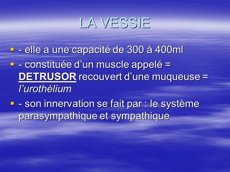 LA VESSIE  - elle a une capacité de 300 à 400ml  - constituée d'un muscle appelé = DETRUSOR recouvert d'une muqueuse = l'urothélium  - son innervation se fait par : le système parasympathique et sympathique