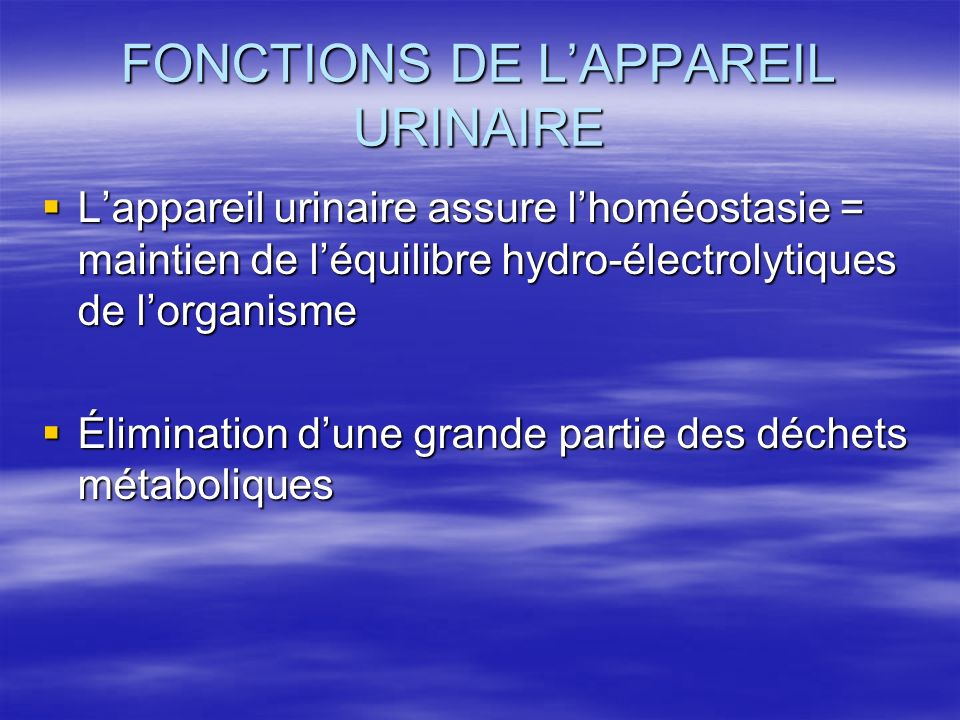 FONCTIONS DE L'APPAREIL URINAIRE  L'appareil urinaire assure l'homéostasie = maintien de l'équilibre hydro-électrolytiques de l'organisme  Élimination d'une grande partie des déchets métaboliques